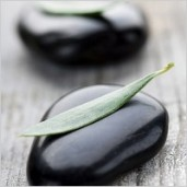 black_stones_and_leaves_stock_photo_170410